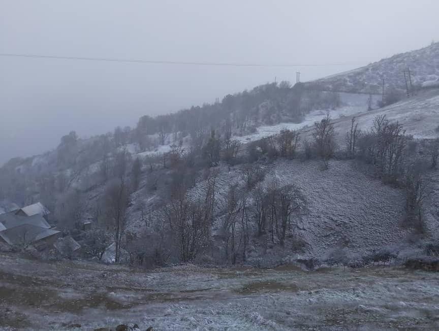 بارش برف در گیلان به روایت تصویر