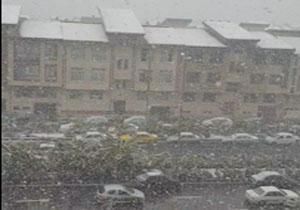 لحظه زیبای بارش برف در منطقه چیتگر/ سقوط درخت برروی خودرو در خیابان شریعتی + فیلم و تصاویر