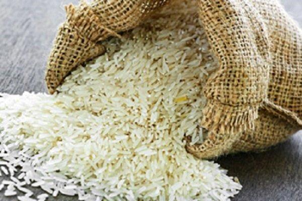 برنجهای وارداتی در انبارها از امروز عرضه میشود