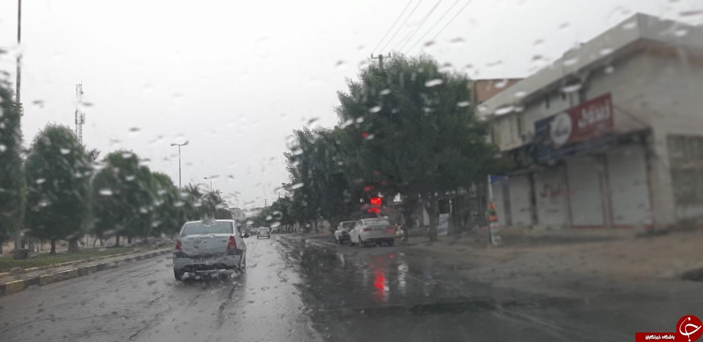 باران مشکلی برای استان بوشهر ایجاد نکرد
