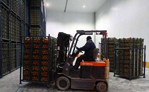 باشگاه خبرنگاران -ذخیره ۱۲۵ هزار تن محصولات کشاورزی در سردخانههای مهاباد