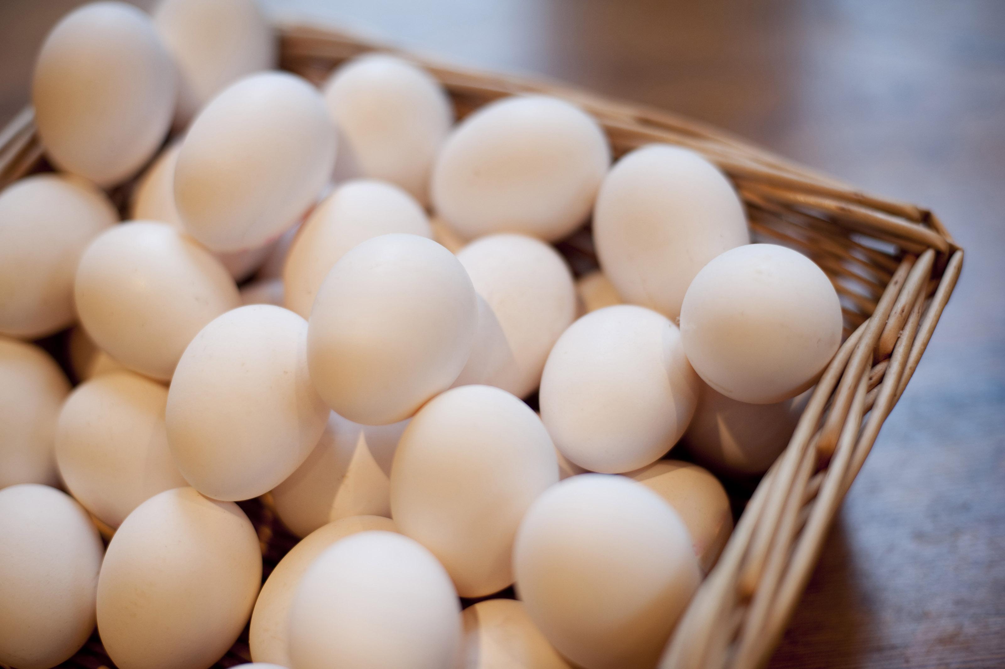 تخم مرغ گران شد/ ستاد تنظیم بازار و سازمان تعزیرات نظارت جدی بر بازار داشته باشند