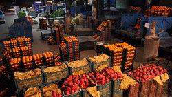 آخرین جزئیات ذخیره سازی مرکبات برای تنظیم بازار شب عید