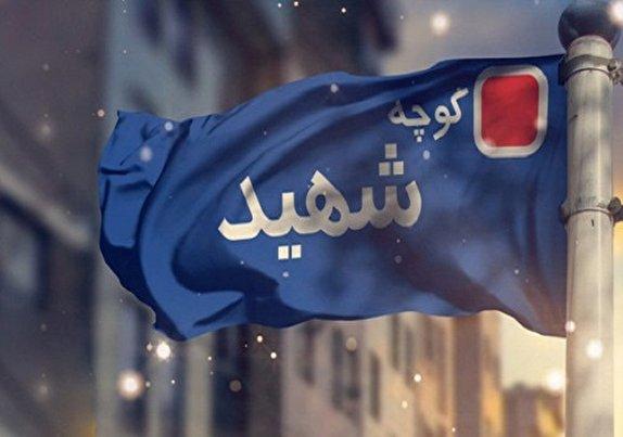 باشگاه خبرنگاران - تابلوی شهدا در معابر اردبیل پربارتر شد / هتک حرمتی در میان نیست +تصاویر