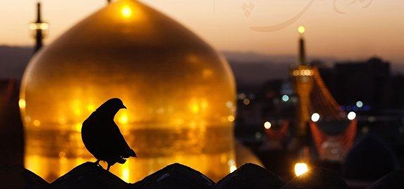 باشگاه خبرنگاران -راز مقبره ۵ چهره عجیب در حرم حضرت رضا (ع)؛ از «نخودکی» و «پالاندوز» تا «جیگیجیگی» نوازنده + تصاویر