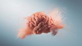 باشگاه خبرنگاران -زندگی در فضا چه اثرهائی روی مغز میگذارد؟