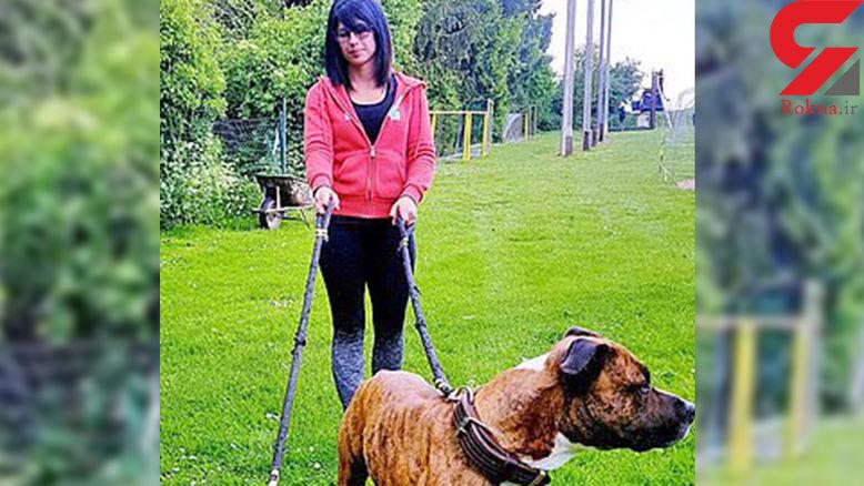 حمله وحشیانه سگهای شکاری به زن جوان در خیابان! / او ۳ ماه دیگر بچه به دنیا میآورد + عکس