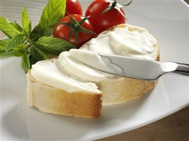 قیمت انواع پنیر صبحانه در بازار