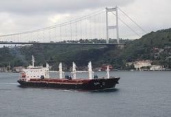 افتتاح خط جدید کشتیرانی حمل محمولات صادراتی به شرق مدیترانه
