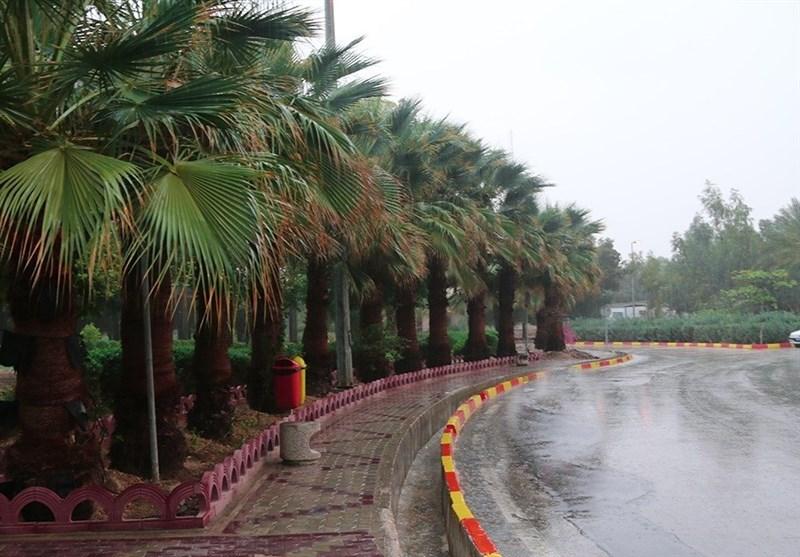 باران در نقاط مختلف استان بوشهر باریدن گرفت