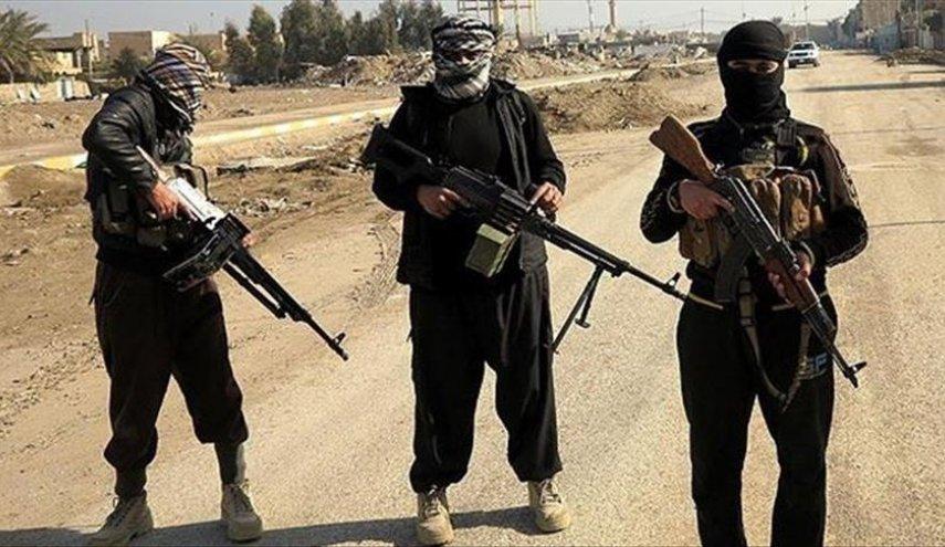 بازداشت پسرعموی ابوبکر البغدادی/ پرونده استخبارات داعش در دست این تروریست خطرناک بود!
