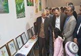 باشگاه خبرنگاران - برپایی نمایشگاه تابلو و نقاشی معلولان ذهنی زیر ۱۴ سال در سردشت