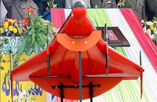 پرندهای که ایران را وارد باشگاه پرندههای بال دلتا کرد/ دلتا، پرندهای پنهانکارکه هنوز هم پنهان است + تصاویر