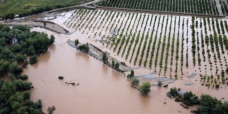 روابط عمومی/ پرداخت بیش از ۱۲ هزار میلیارد ریال غرامت کشاورزان سیل زده