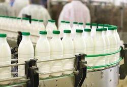 خبرنگار: محبی/ تکذیب خرید شیرخام با نرخ ۳ هزار تومان از دامداران/ قیمت هر کیلو دام سبک به ۳۵ هزار تومان رسید