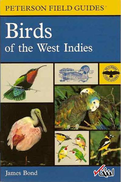همه چیز درباره جیمز باند واقعی / از تخصص پرنده شناسی تا بازداشت در فرودگاه
