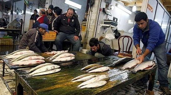 بازار ماهی در شب یلدا نوسان چندانی ندارد / ثبات قیمت ماهی در بازار شب یلدا / اختلاف 100 درصدی قیمت از مزرعه تا بازار