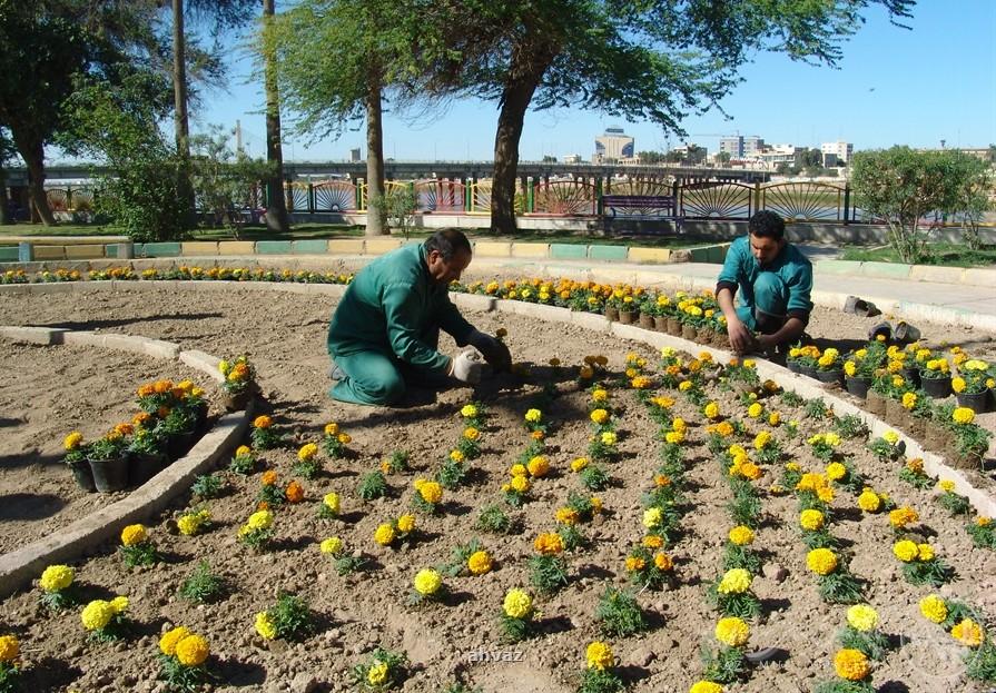 بهبود وضعیت فضای سبز شهر ایلام