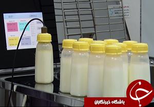 تامین تغذیه نوزادان نارس با اهدا شیر به بانک شیر خوزستان