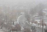 باشگاه خبرنگاران -لحظات زیبای بارش برف در چادگان + فیلم