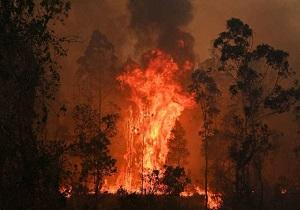 استرالیا همچنان در آتش میسوزد