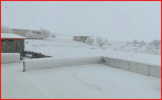 بارش برف در دلفان