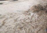 باشگاه خبرنگاران -نجات یک شهروند از مرگ حتمی در بارندگی/جریان آب یک دستگاه ماشین را با خود برد + تصاویر