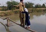 باشگاه خبرنگاران -ماجرای عکس پل چوبی منتشر شده در فضای مجازی چیست؟