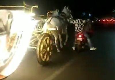له شدن یک مرد در زیر کالسکه اسبهای رم کرده + فیلم