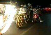 باشگاه خبرنگاران -له شدن یک مرد در زیر کالسکه اسبهای رم کرده + فیلم