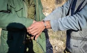 سه شکارچی متخلف در دام قانون