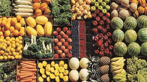 عراق واردات ۱۷ محصول زارعی و باغی ایران را ممنوع کرد