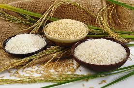 انواع برنج در غرفه های تره بار کیلویی چند؟