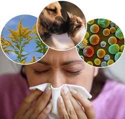 ۱۰ عامل آلرژیزای پنهان در خانه که فکرش را هم نمیکنید
