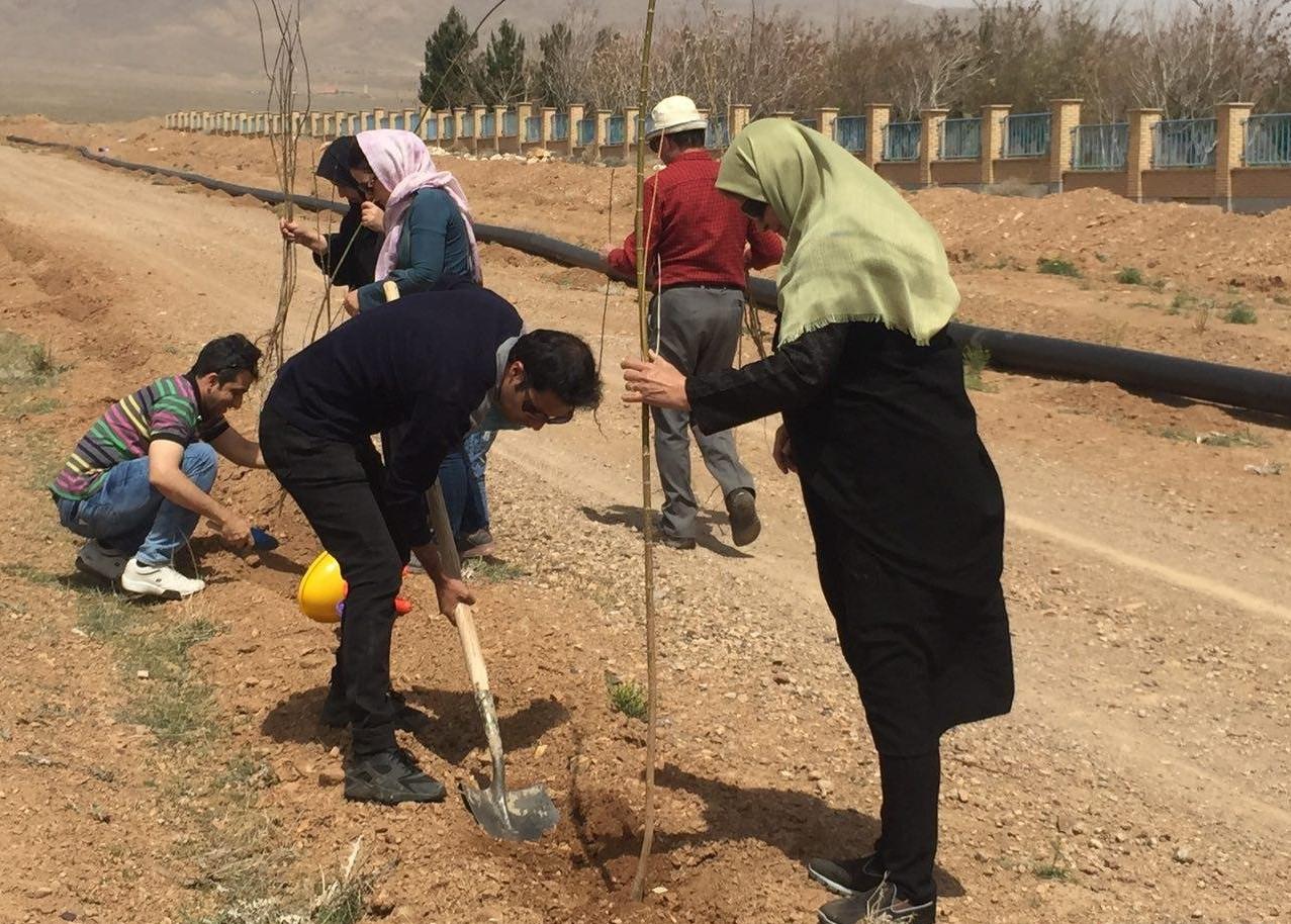 نهالکاری ۲هزار هکتار از اراضی بیابانی شهرستان دهلران
