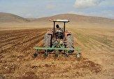 باشگاه خبرنگاران -کشت گندم در ۱۴۹ هزار هکتاراز اراضی کشاورزی استان قزوین