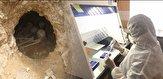 باشگاه خبرنگاران -پایان پنجمین فصل کاوش باستان شناسی منطقه لیارسنگ بن املش