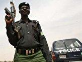 نيجر،مسلح
