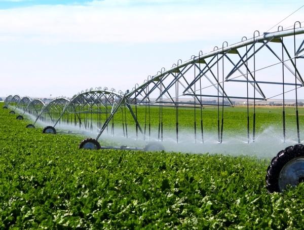 اجرای آبیاری نوین در استان همدان دو برابر میانگین کشور