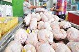 باشگاه خبرنگاران -نوسان ۴۰۰ تومانی قیمت مرغ در بازار/ فروش با نرخ بالای ۱۳ هزار تومان غیر منطقی است