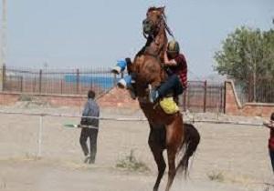 مسابقات پرش با اسب جام سرداران آذربایجان برگزار شد