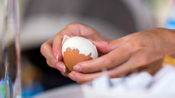 فواید زرده تخم مرغ
