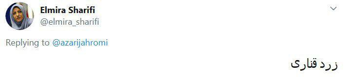از زرد قناری تا پَپه؛ پیشنهاد کاربران برای نامگذاری سورپرایز آذری جهرمی