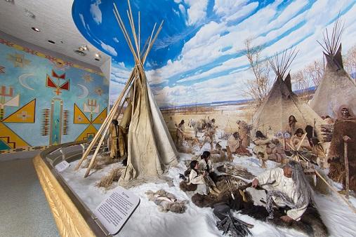 تاریخچه زمین را در یک موزه سبز مرور کنید