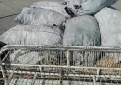 کشف زغال قاچاق در مریوان