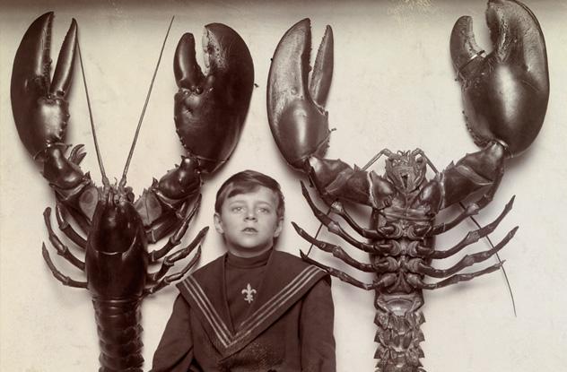 ۱۰ عکس تاریخی که درک شما از اندازه را بهم میریزد