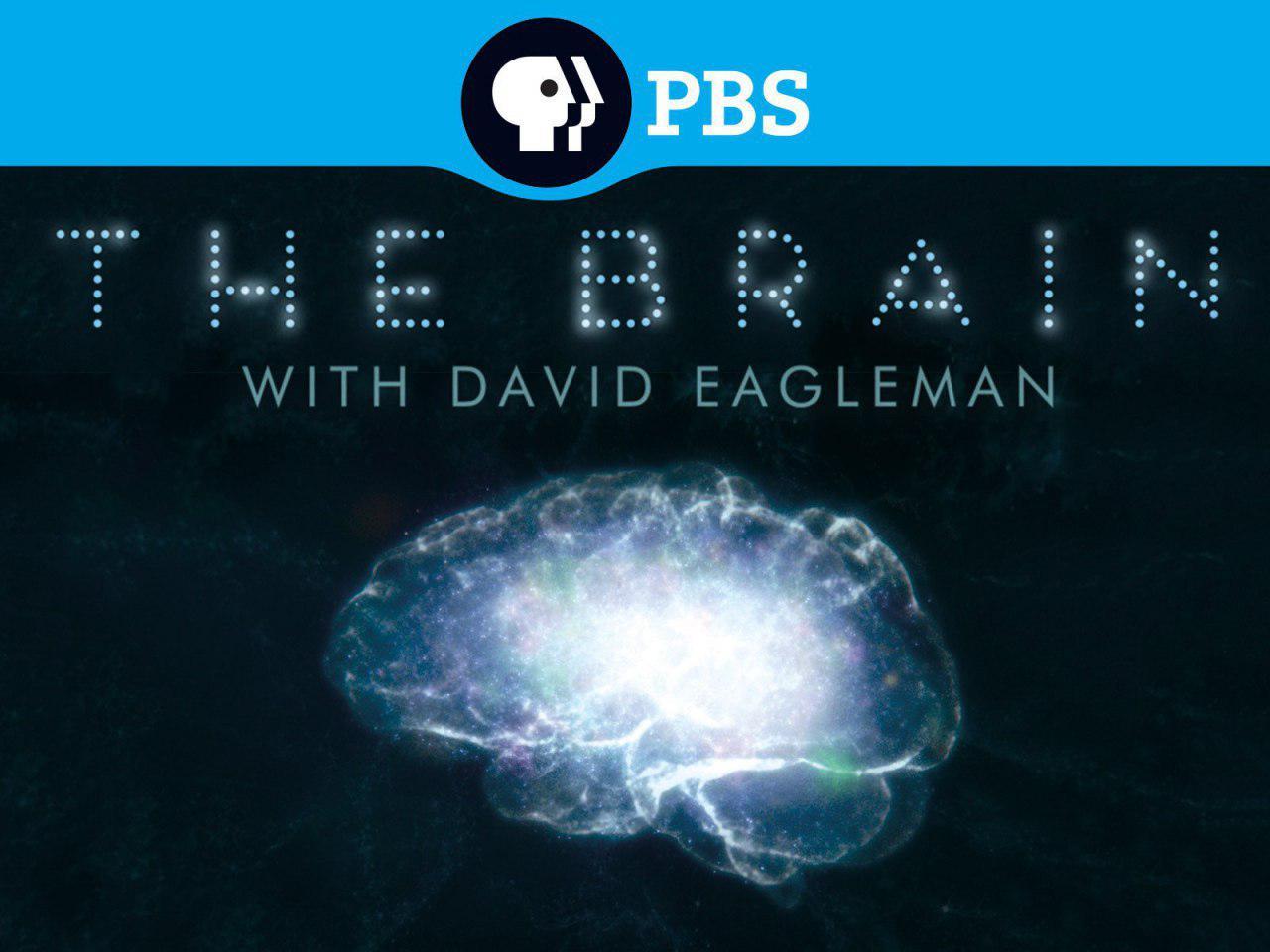 مجموعه جذاب «داستان مغز با دیوید ایگلمن» برای اولین بار در قاب شبکه چهار