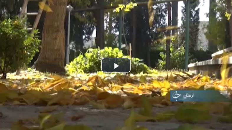 زیباییهای پاییز در لرستان تا یک گردهمایی پزشکی +فیلم