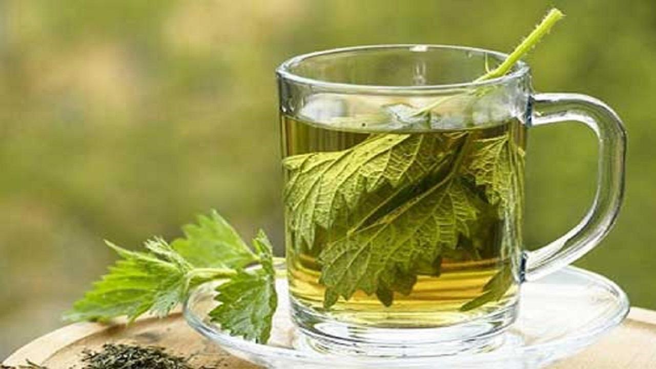 ۹// نوشیدن کدام دمنوش در درمان بیماریهای تنفسی موثر است؟