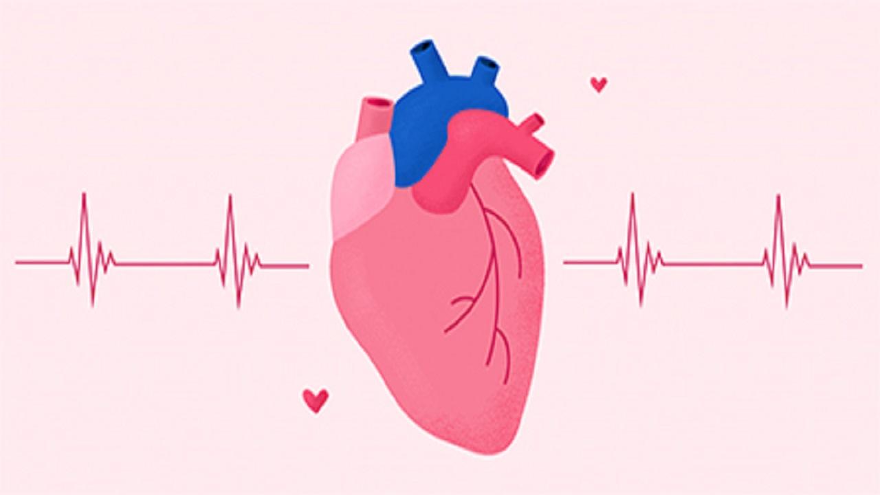 ضربان قلب نرمال در سنین مختلف